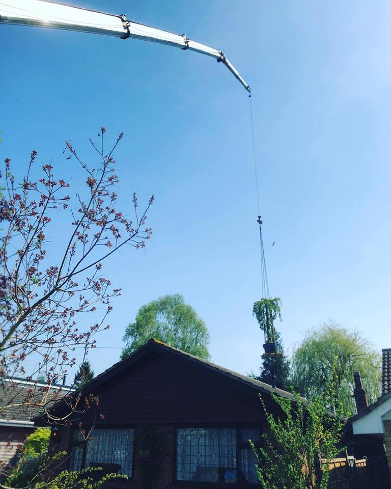 Domestic Crane Hire